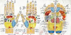 acupressure points for libido - Google Search
