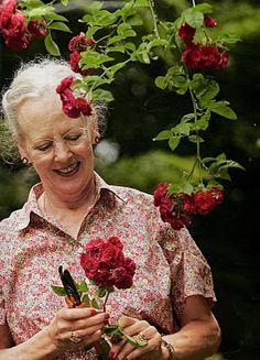 Días de rosas: Grandes roseros: la Reina Margarita de Dinamarca Kingdom Of Denmark, Princess Marie Of Denmark, Queen Margrethe Ii, Danish Royalty, Princesa Mary, Royal Blood, Danish Royal Family, Oldenburg, Royal House