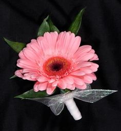 Picture of Gerber Daisy Corsage Daisy Bouquet Wedding, Wedding Flower Photos, Gerbera Bouquet, Pink Gerbera, Prom Flowers, Wedding Flowers, Wedding Bells, Pink Boutonniere, Cute Wedding Ideas