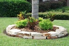 Landscaping around trees flower beds plants ideas Landscaping Around House, Home Landscaping, Landscaping With Rocks, Front Yard Landscaping, Commercial Landscaping, Landscaping Software, Landscaping Borders, Hydrangea Landscaping, Aguas Frescas