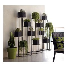 Multi-tiered plant stands to add interest to a boring outdoor wall