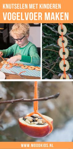 Maak samen met je kinderen vogelvoer van fruit. Knutsel een slinger voor de vogels. Leuk om samen te maken voor in de tuin in de Herfst of de Winter.