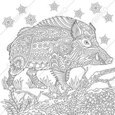 Adult Coloring Pages. Wild Boar. Pig. by ColoringPageExpress