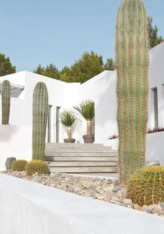 Can Dela combines the classic elements of Mediterranean design – think whitewashed walls and terraced gardens – with a serenely modern colour palette of woods, greys, cream and polished concrete Ibiza villa Outdoor Spaces, Outdoor Living, Outdoor Patios, Outdoor Kitchens, Casas Containers, Modern Color Palette, Desert Homes, Terrace Garden, Succulent Planters