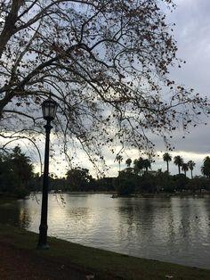 Meu belo clique em um dos parques mais bacanas de BsAs.