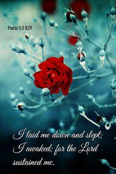 Psalm 3:5 KJV