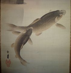 Estampe japonaise carpe koi carp koi dessins et for Carpe koi japonaise