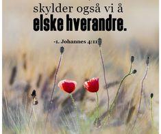 Mine kjære, har Gud elsket oss slik. Flowers, Plants, Bible Verses, Pictures, Plant, Royal Icing Flowers, Flower, Florals, Floral