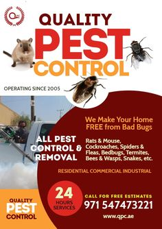 Quality Pest Control services for Residential and Commercial Places Bed Bug Control, Best Pest Control, Pest Control Services, Invert Colors, Classic Names, Termite Control, Crop Photo, Bees And Wasps, Promotional Flyers