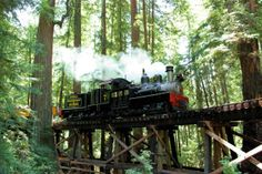 Roaring Camp Railroads is offering a series of Rain Forest Weekends, taking passengers on a steam train through virgin redwoods on narrow-ga...