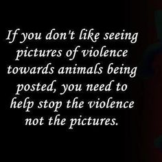 Please repin...You should get angry and do something about animal abuse and neglect instead of reporting pins to Pinterest and having them removed. When you take photos of reality away from the human eye, you are a willing participant in the involvement of it, allowing people to turn a blind eye to the evil action. You should use your sensitivity in a more productive way...Too bad it's not a candy recipe and it ruined your day...just think how the animal feels.