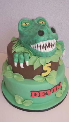 Ideas for cakes for the big 5!