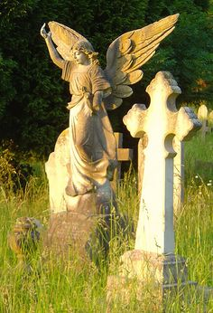 Such a lovely angel in an old cemetery.  Photo via web.....