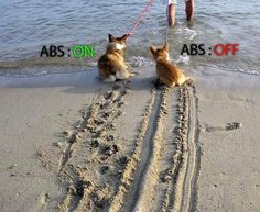 Funny little car humour. Difference between having ABS brakes or not :)