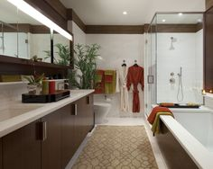 Bathroom Galley Kitchen Design, Pictures, Remodel, Decor and Ideas - page 3
