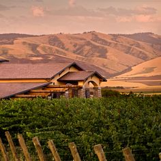 Best Washington State Wineries to Visit: Northstar Winery