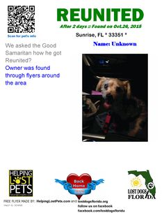 Helping Lost Pets | Dog - Yorkshire Terrier Yorkie - Reunited
