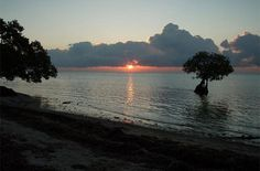 Long Key State Park, Long Key - campground