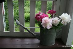 kukka-asetelma Watering Can, Canning, Plants, Plant, Home Canning, Planets, Conservation