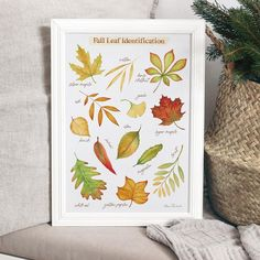 Fall Leaf Identification Art Print, Fall and Thanksgiving Decor - 8\x10\