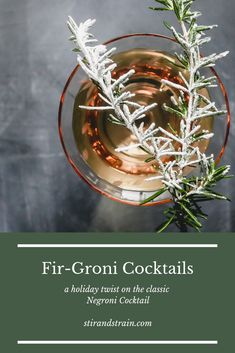 Today I bring you a weekend cocktail. A festive, fir tree scented drink you can sip on as you bake cookies, or wrap gifts, or use as a palate cleanser between licking all those damn holiday cards y… Winter Cocktails, Christmas Cocktails, Easy Cocktails, Classic Cocktails, Craft Cocktails, Palate Cleanser, Wrap Gifts, Fir Tree, Cocktail Making