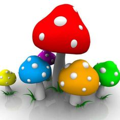 Mushrooms!!!  Have this for wallpaper!!!  Love it!!!!