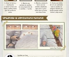 SEEDBALL Agricultura natural   via Tumblr