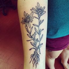 edelweiss tattoo - Google Search