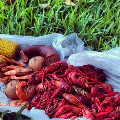 Check out the latest 3000 acre kitchen post • Crawfish at New Orleans' City Park http://3000acrekitchen.com/post/25533769849/crawfish-at-city-park#