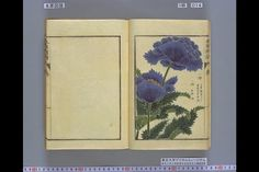 Zufu Materia Medica, folk remedies from late 1700s Japan. Copyright © 2000-2003 The University Museum, The University of Tokyo. Click through for database of images.