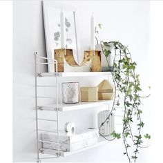 Order String shelving systems such as the Pocket shelf from the Olson and Baker online shop. Scandinavian Shelves, String Regal, String Shelf, Distressed Furniture Painting, Eclectic Furniture, Storage Design, Bedroom Accessories, White Rooms, Best Interior Design