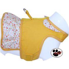 mochila para carregar cachorro - Pesquisa Google