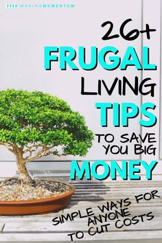 Simple Frugal Living Tips: 25 Easy Ideas For Anyone To Save Money - Finance tips, saving money, budgeting planner Ways To Save Money, Make More Money, Money Tips, Money Saving Tips, Money Budget, Big Money, Groceries Budget, Free Groceries, Money Fast
