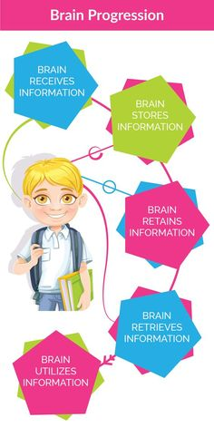 Learning Memory: How Your Child's Input / Output Systems Create a Learning…