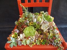 Great ideas for turning an old chair to a mini-garden/planter