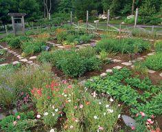 Homestead farm garden layout and design for your home 11 - garden landscaping Potager Garden, Garden Landscaping, Landscaping Software, Garden Edging, Herb Garden, Farm Gardens, Outdoor Gardens, Veggie Gardens, Design Patio