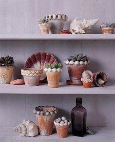 Embellishing flower pots with sea shells...