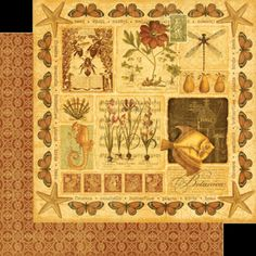 Graphic45-BOTANICABELLA-12x12-Dbl-Sided-2-scrapbooking-papers-RETIRED