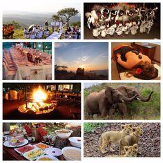 Amakshosi Safari Lodge in Pongola, for weddings, honeymoons, proposals or a romantic weekend away Bush Wedding, Lodge Wedding, Romantic Weekends Away, Outside Showers, Big 5, Game Reserve, Honeymoons, Hammocks, Lodges