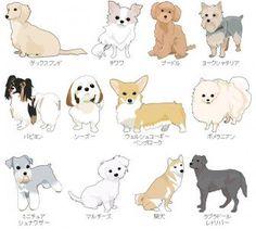 dog training,dog hacks,teach your dog,dog learning,dog tips Anime Animals, Animals And Pets, Cute Animals, Cute Animal Drawings, Cute Drawings, Dogs And Puppies, Baby Puppies, Cute Puppies, Dog Grooming Shop