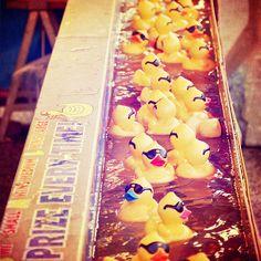 Carnival Game, Prizes -Ducks (8x8) - Fine Art Print. $30.00, via Etsy.