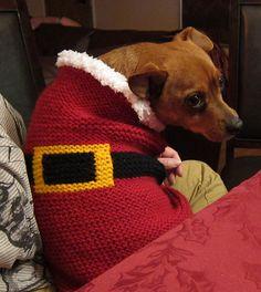 Garter Stitch Dog Jacket pattern by Annie Modesitt Dog Sweater Pattern, Crochet Dog Sweater, Dog Pattern, Free Pattern, Crochet Pet, Knitting Patterns Free Dog, Crochet Patterns, Crochet Dog Clothes, Crochet Santa