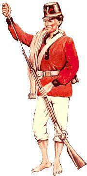American Uniform, American War, Latin America, South America, Triple Alliance, Armed Conflict, Victorian Era, Army, Military Uniforms