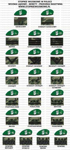 Stopnie Wojskowe w Polsce - Wojska Lądowe Military Ranks, Military Gear, Military Police, Military Uniforms, Event Posters, Httyd, Badges, Poland, Patches