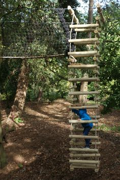 Touching the stars...Rope Ladders Treehouse Life style.