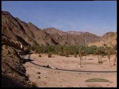 Sinai Bedouin Safari ( Salem Safari ) Dahab, South Sinai, Egypt