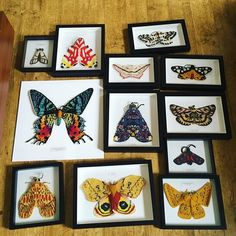 All the moths I have right now. I'm trying to decide who gets to come to yarn shop day @wildandwoollyshop this Saturday...!