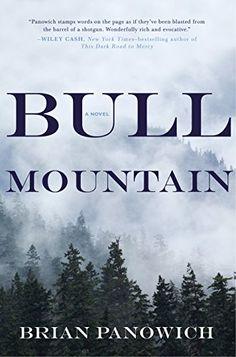 BULL MOUNTAIN by Brian Panowich http://smile.amazon.com/dp/039917396X/ref=cm_sw_r_pi_dp_1s4Cwb1RMEQRG