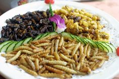 Edible bugs on a plate  Seriously...?..yes.. very seriously and you'd better get used to it because very soon that will be the most economical way of feeding our people across the planet starting at your place.... any spare bugs in your house we can buy?... could be your next cereal...