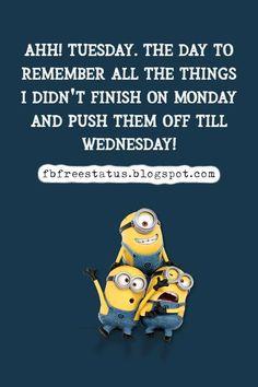 funny tuesday memes Happy Tuesday Meme, Happy Tuesday Morning, Tuesday Motivation Quotes, Funny Happy, Morning Quotes, Motivational Quotes, Entertaining, Memes, Motivating Quotes